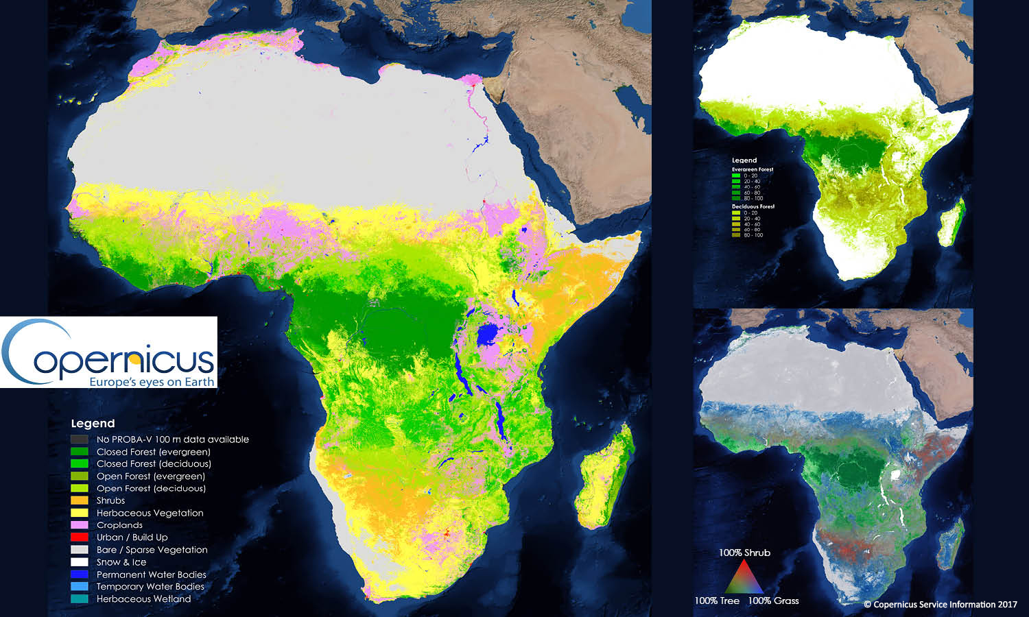 Copernicus Global Land Cover Map