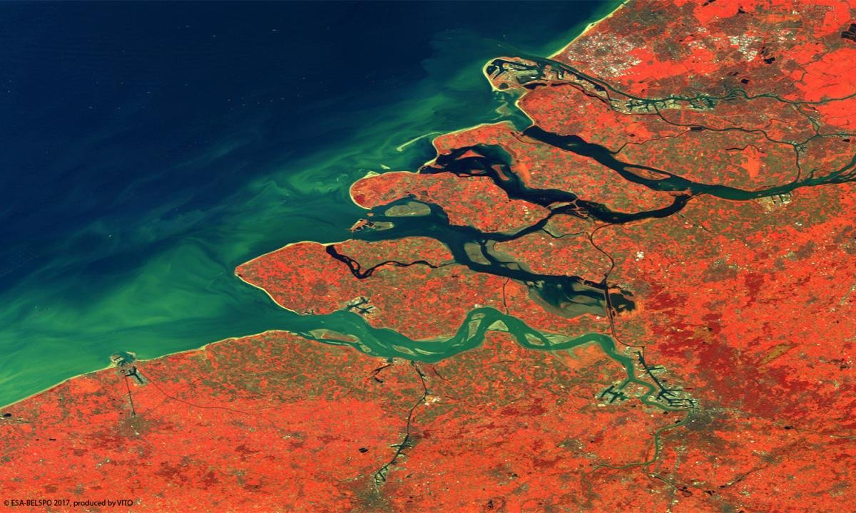 Rhine and Scheldt Delta